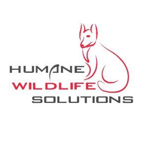 Humane Wildlife Solutions